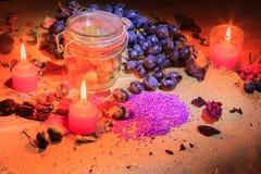 Aún vida hermosa de la fruta y de las lámparas Imagen de archivo