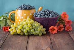 Aún vida multicolora con los arándanos, las uvas y las flores Imágenes de archivo libres de regalías