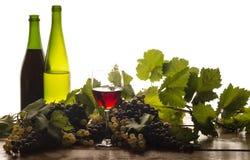 Aún vida otoñal con el vino Imagenes de archivo