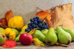Aún vida otoñal con la fruta y las hojas en una base de madera Fotografía de archivo libre de regalías