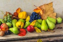 Aún vida otoñal con la fruta y las hojas en una base de madera Imágenes de archivo libres de regalías