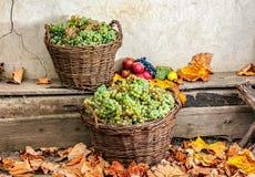 Aún vida otoñal con la fruta y las hojas en una base de madera Foto de archivo