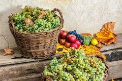 Aún vida otoñal con la fruta y las hojas en una base de madera Foto de archivo libre de regalías