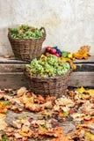 Aún vida otoñal con la fruta y las hojas en una base de madera Imagenes de archivo
