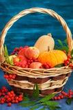 Aún vida otoñal con las calabazas, las manzanas y la sorba Imagen de archivo libre de regalías