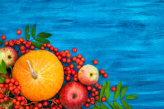 Aún vida otoñal con las calabazas, las manzanas y la sorba Fotos de archivo libres de regalías