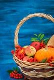 Aún vida otoñal con las calabazas, las manzanas y la sorba Foto de archivo libre de regalías