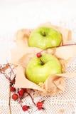 Aún-vida a partir de dos manzanas Fotografía de archivo libre de regalías