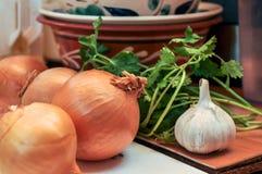 Aún vida rústica - cebollas, ajo y perejil verde Imagen de archivo libre de regalías