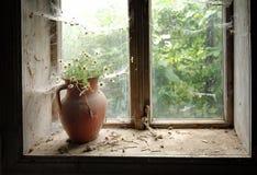Aún vida rústica con las flores salvajes en jarro marrón de la arcilla Fotografía de archivo