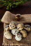 Aún vida rústica con los huevos de codornices en cubo, caja y cuenco en una servilleta de lino sobre el fondo de madera, foco sel Fotos de archivo libres de regalías