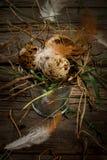 Aún vida rústica con los huevos en cubo del metall del vintage Imagenes de archivo