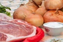 Aún-vida rústica de cebollas, de un pedazo de carne, de la sal y del perejil Foto de archivo