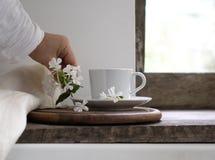 Aún vida rústica la mano femenina pone las flores al lado de una taza de té vintage, fondo de madera, ventana y recién hecho Foto de archivo libre de regalías