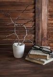Aún vida rústica - pila de libros viejos, de vidrios y de la composición de ramas en un florero blanco Foto de archivo
