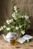 Aún-vida-ramo de jazmín floreciente Foto de archivo libre de regalías