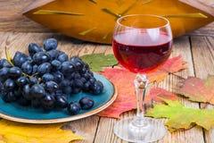 Aún vida retra con el vino rojo, el libro, el reloj y la uva Fotografía de archivo