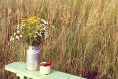 Aún vida retra con las margaritas y las fresas Imágenes de archivo libres de regalías