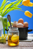 Aún vida retra con los huevos y el tulipán Fotografía de archivo
