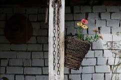 Aún vida rural Foto de archivo libre de regalías