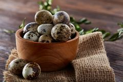 Aún vida rural con el cuenco lleno de huevos codornices, huevos en una servilleta casera, boj en el fondo de madera, visión super Fotografía de archivo libre de regalías