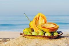 Aún-Vida tropical Foto de archivo libre de regalías