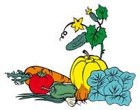 Aún-vida vegetal libre illustration