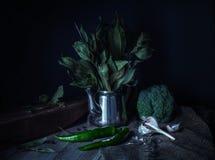 Aún-vida verde en un estilo rústico Fotos de archivo libres de regalías
