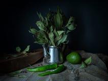 Aún-vida verde en un estilo rústico Imágenes de archivo libres de regalías