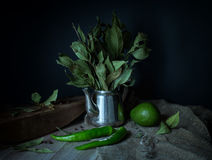 Aún-vida verde en un estilo rústico Fotografía de archivo libre de regalías
