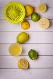 Aún-vida vertical de frutas cítricas Imagen de archivo