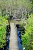 A木板走道Arieal视图沼泽的 库存照片