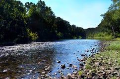 A流动的河和岩石银行风景看法在森林里 免版税库存照片
