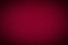 A Background Texture Of Leather Royalty Free Stock Photos