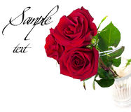 A Beautiful Bouquet Of Three Red Roses Royalty Free Stock Photos