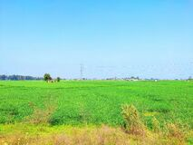 Free A Beautiful Farmer Village Seen Of Punjab In India During Morning Time Stock Images - 175311734