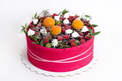 A Beautiful Fruit Cake With A Pink Biscuit Around It Stock Images