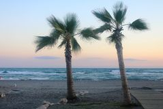 A Beautiful Sunset At The Coast With Palm Trees In Torrox Costa, Spain Stock Photography