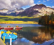 Free A Boat Mooring And A Dog Royalty Free Stock Image - 9070916