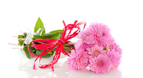 Free A Bouquet Pink Dahlia Flowers Stock Image - 17517381