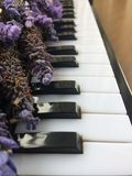 A Bouquets Of Purple Lavender On Piano Keyboard On Wooden Table Stock Images