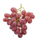 A Bunch Of Grapes Stock Photography