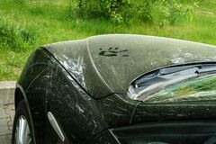Free A Car Dirty From Pollen Stock Photo - 197380210