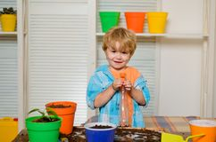 Free A Child Watering Flowers. The Boy Cares For House Plants. Assistant Helper Kid. Home Biology. Fun Learning. Household Stock Photos - 153213393