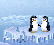 A Couple Of Penguins Sitting On An Ice Floe Royalty Free Stock Photo