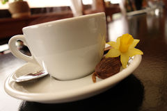 A Cup Of Coffee Royalty Free Stock Photos