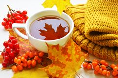 A Cup Of Tea With Sea-buckthorn And Viburnum Royalty Free Stock Photo