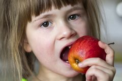 A Cute Little Curly Toothless Girl Smiles And Holds A Red Apple. Royalty Free Stock Photography