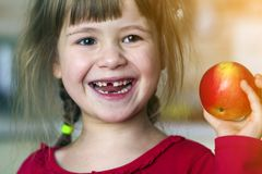 A Cute Little Curly Toothless Girl Smiles And Holds A Red Apple. Portrait Of A Happy Baby Eating A Red Apple. The Child Loses Milk Stock Photos