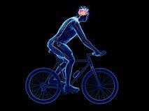 A Cyclists Brain Stock Photos